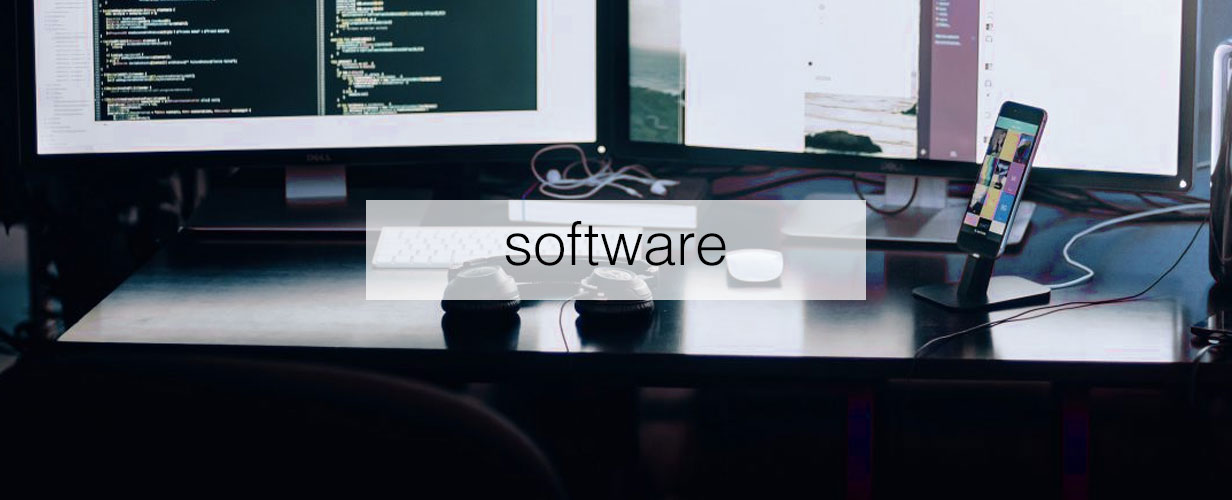custom enterprise level software development